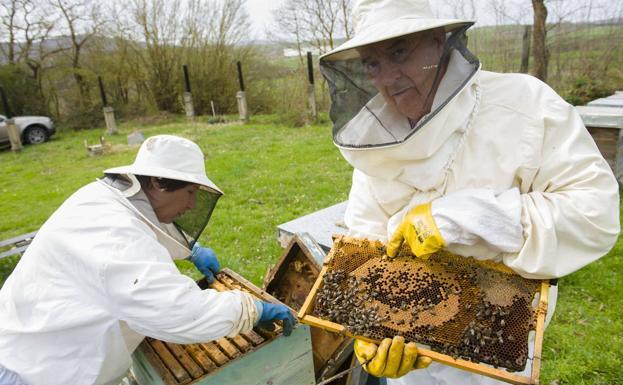 Qui cuida les abelles?
